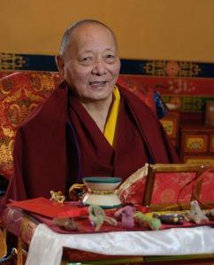 Khenpo Karthar Rinpoche; photo, Stephanie Colvey