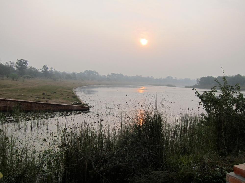 BLOGMorning in Lumbini
