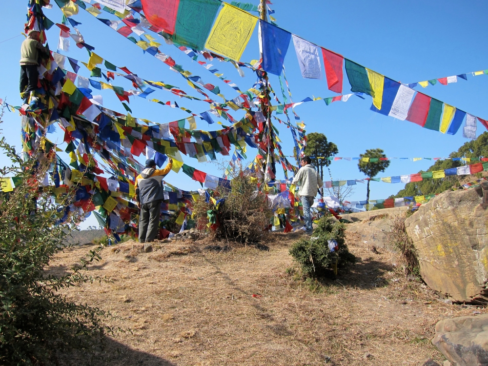 blogPhurbu Raising Prayer Flags, Rewalsar_edited-1