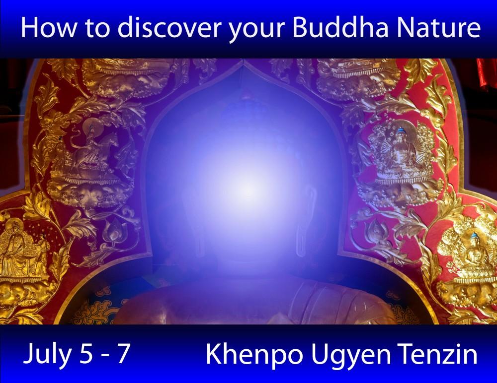 buddhanatureposterimage