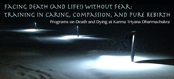 facingdeathanddyingheader_edited-1