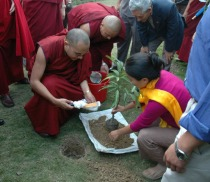HHKarmapa and Lillian Sum (in the pink top) planting trees in Bodhgaya in 2009