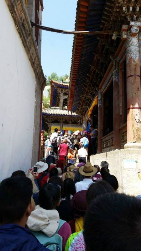 Crowds were heavy at Kumbum Monastery