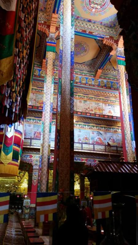 Inside main shrine room at Thrangu Monastery.