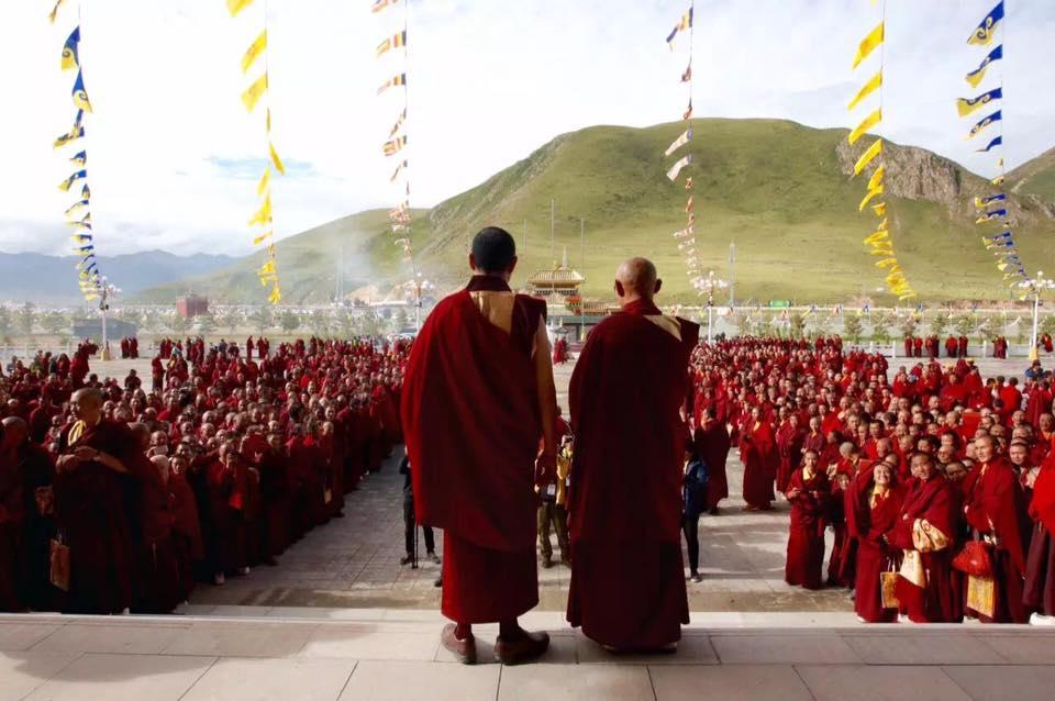 Zuri Rinpoche and Lodro Nyima Rinpoche.