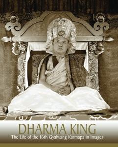 KTDP_AD_DHARMA KING_FrontCover.CYMK