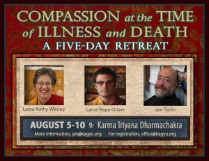 2016KTDSUMMERcompassionat the time of illness and death2